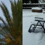 Symbolbild Sommer und Winter