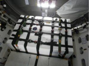 Die Saffire-1 Hardware ist im Orbital ATK Cygnus Modul fest gemacht. Bild: NASA/Oribtal ATK